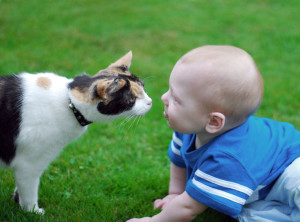 Cat-And-Baby-Kiss